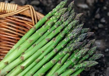 女性养生:10种食物高手 皮肤白嫩今夏
