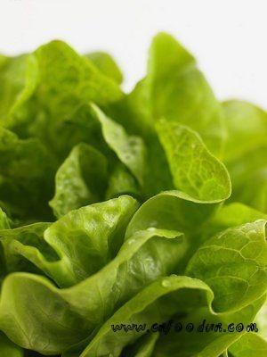 养生:8种日常食物含天然毒素 食用不当小心致命