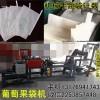 小型全自动葡萄套袋制造机械设备