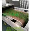 西安圣达隧道式微波松针杀青干燥机