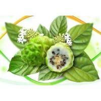 诺丽果功效和作用之调整酸性体质至碱性体质