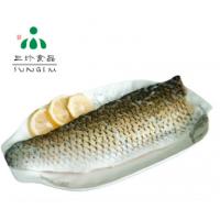 供应新鲜冷冻带皮草鱼片 安徽三珍食品厂家直销