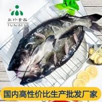 供应安徽三珍食品冷冻烤鱼食材 开背清江鱼