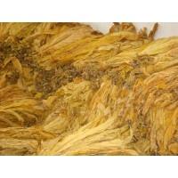 硫酸烟碱40%  烟叶浓缩液