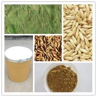 供应 燕麦提取物β-葡聚糖   燕麦提取物 1公斤起订