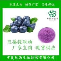 蓝莓膳食纤维 蓝莓纤维粉 1公斤起订包邮 长期供应
