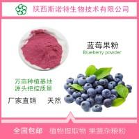 蓝莓粉蓝莓花青素厂家批发食品级原料厂家