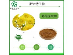 菊花提取物菊花粉食品级