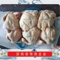 种鸡老母鸡白条|山东白条鸡生产厂家|冷冻白条鸡厂家批发