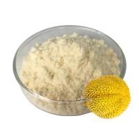 烘焙食品原料固体饮料SC源头厂家直销果蔬粉批发冻干榴莲粉