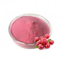 SC厂家直销固体饮料冰淇淋粉批发蔓越莓提取物蔓越莓果汁粉