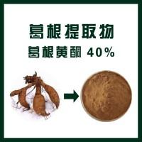 葛根提取物 葛根黄酮40%