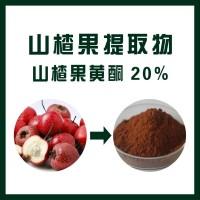 山楂果提取物/山楂果黄酮20%